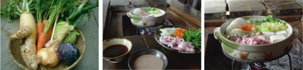 野菜収穫_鍋